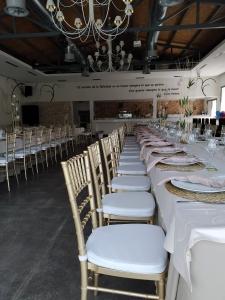 sillas banquete